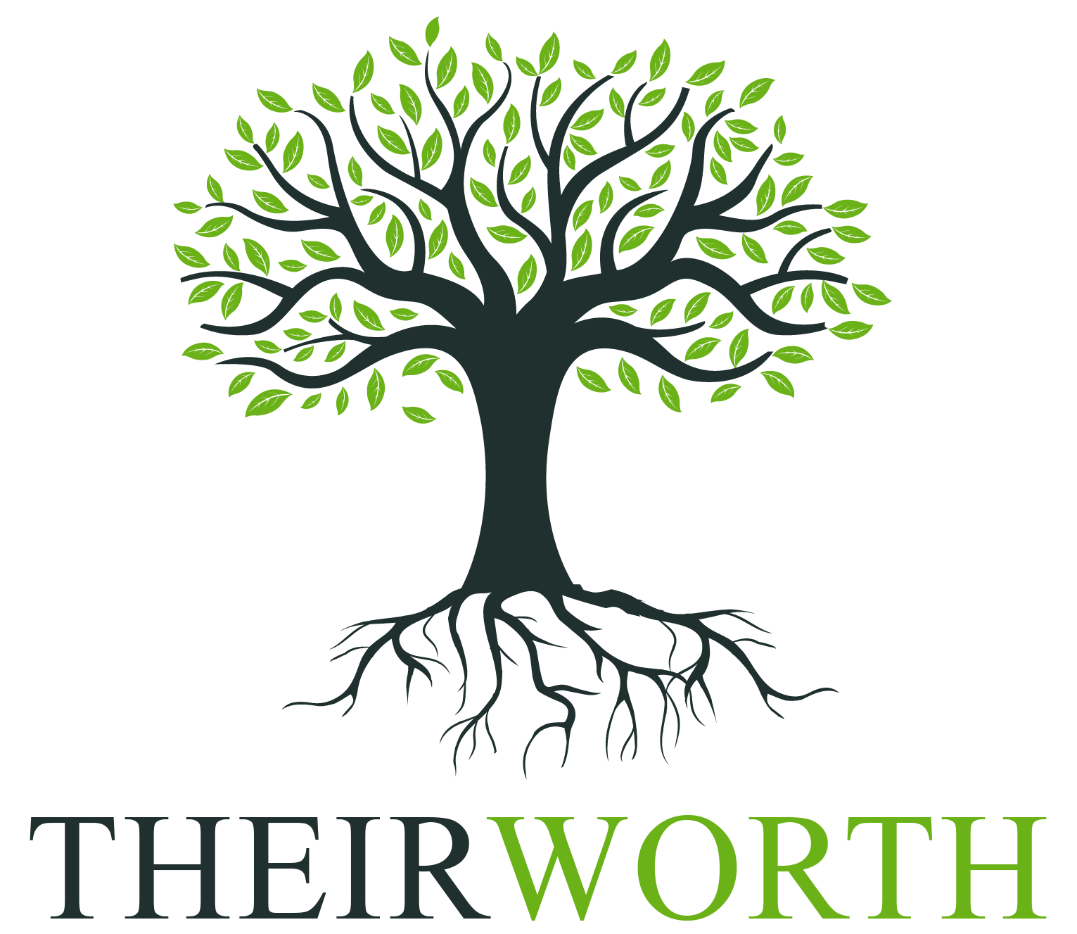The first ever asset search engine Their Worth TheirWorth Net Worth Networth